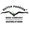 dutch-passion